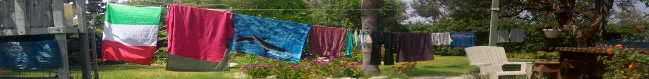 clothesline (2)