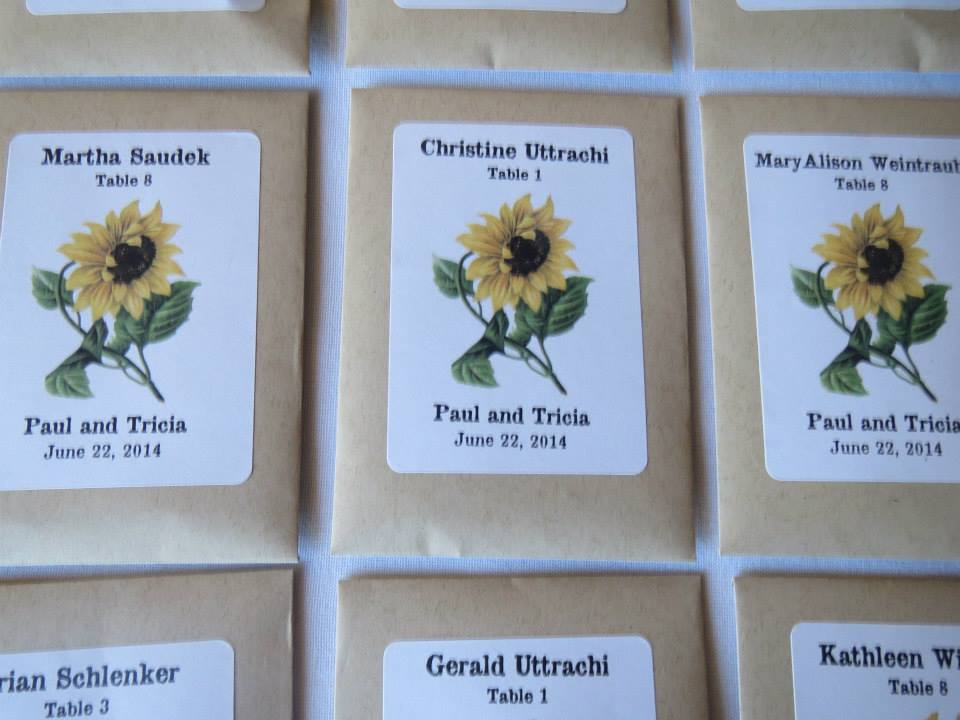 Sunflower seed escort cards do it yourself n save click here to go back to the main semi diy wedding article solutioingenieria Gallery